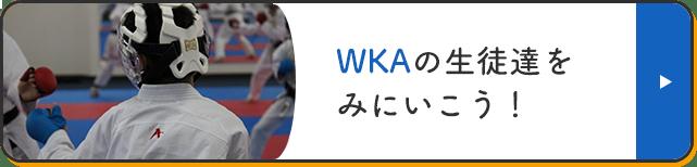 WKAの生徒達を見に行こう!